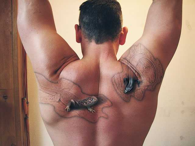 periscopio muscular